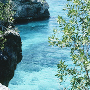 d_0007124_negril_west_end_cliffs.jpg