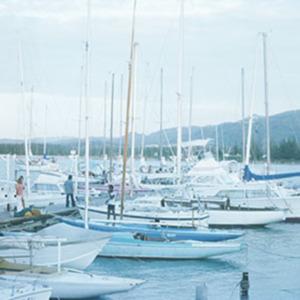 d_0007085_montego_bay_yacht_club.jpg
