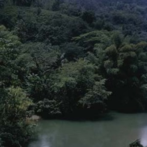 d_0007165_rio_grande_blue_mountains.jpg