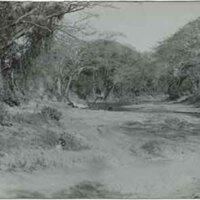 Rio Cobre