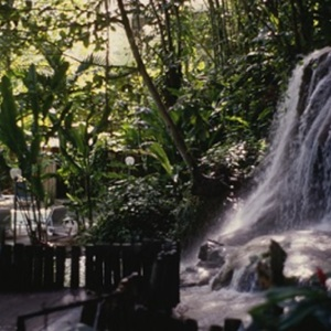 d_0006929_waterfall_enchanted_garden.jpg
