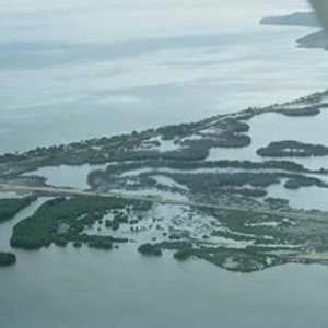 d_0006583_dawkins_pond_mangroves_from_air.jpg