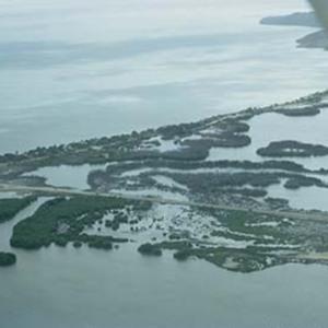 d_0006583_dawkins_pond_mangroves_from_air.jpg