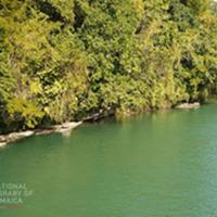 d_0004405_rio_grande_river_portland.JPG