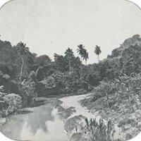 d_0005637_slide_25_jamaica_river_cobre.jpg