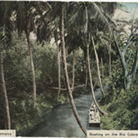 d_0004830_boating_on_rio_cobre_bog_walk.jpg